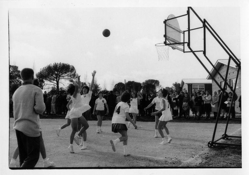 Basketball(5).jpg
