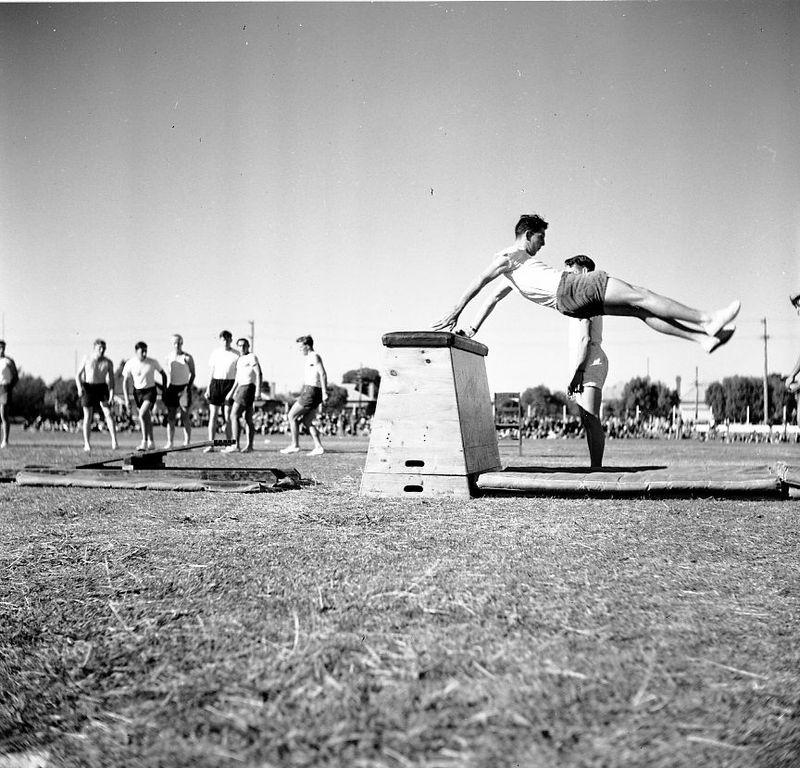 1951 - Jubilee Mens Gymnastics3.jpg