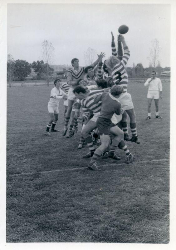 Rugby(7).jpg