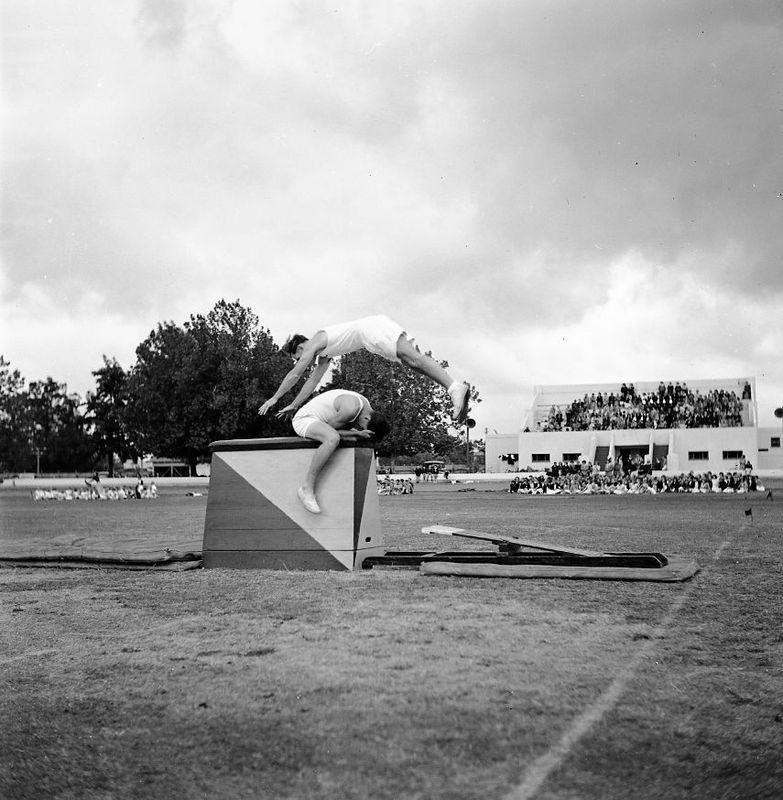 1951 - Jubilee Mens Gymnastics9.jpg