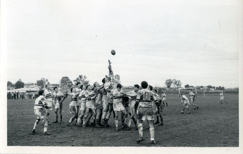Rugby(4).jpg