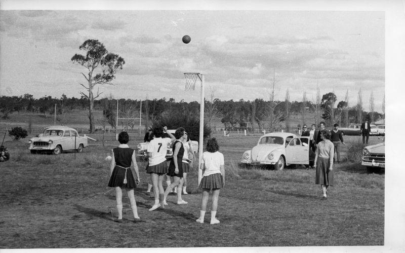 Womens Basketball 1964.jpg