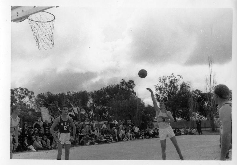 Basketball(3).jpg