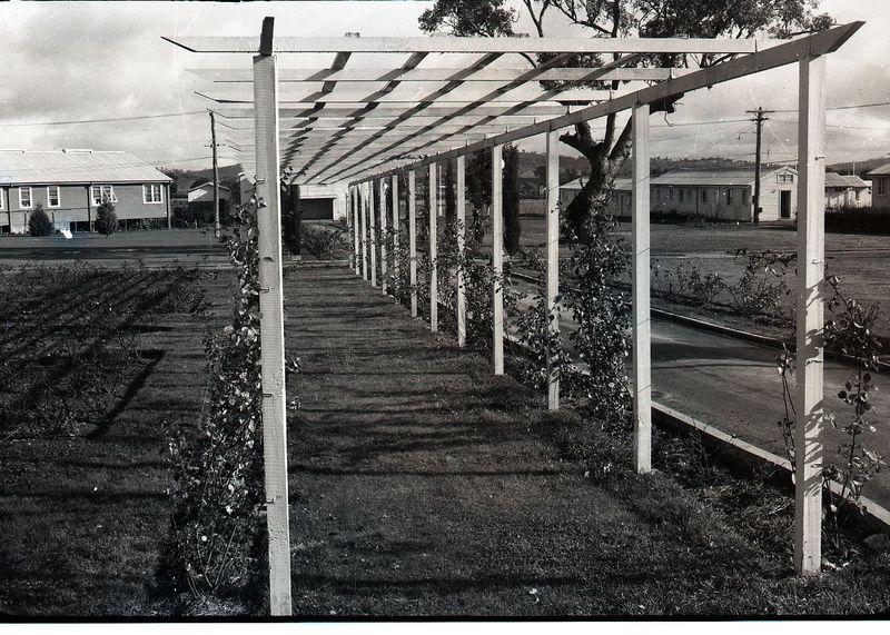 1953-College Grounds7.jpg