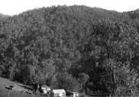 Stokes' Hut, near Goobarragandra River