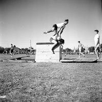 1951 - Jubilee Mens Gymnastics5.jpg