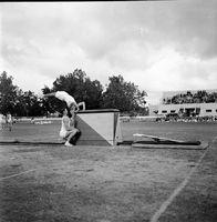 1951 - Jubilee Mens Gymnastics8.jpg
