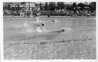 Swimming(3).jpg