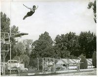 Diving(1).jpg