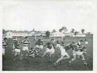 Rugby(2).jpg