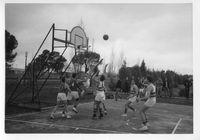 Basketball(2).jpg